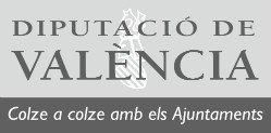 SUBVENCIÓ PER A LA REALITZACIÓ DE CAMPANYES DE SALUT PÚBLICA 2020